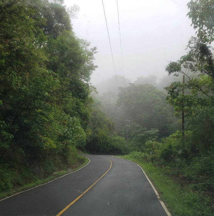 Windy mountain roads lead to all types of hidden treasures in Boquete.